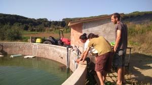 la bassa d'on es treu l'aigua per regar ...i que refresca no només les hortalisses